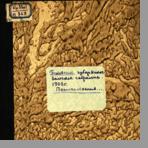 Псковское губернское земское собрание  Постановления XXXVI очередного Псковского губернского земского собрания в съезде 1-14 декабря 1900 года. С приложениями